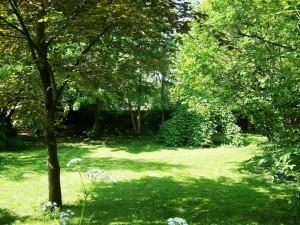 Grote tuin